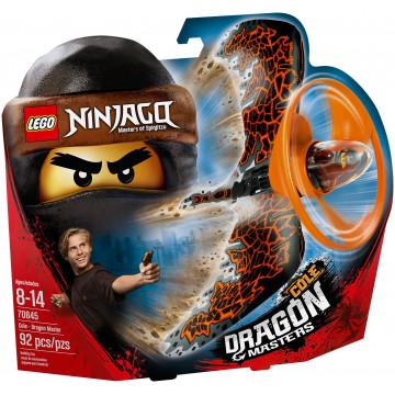 Ninjago - Cole: Maestro Dragone